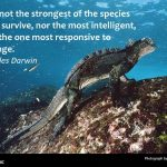 Five quotes on resilience