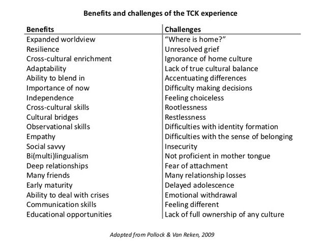 A table listing the pros and cons, benefits and challenges of expat life on children